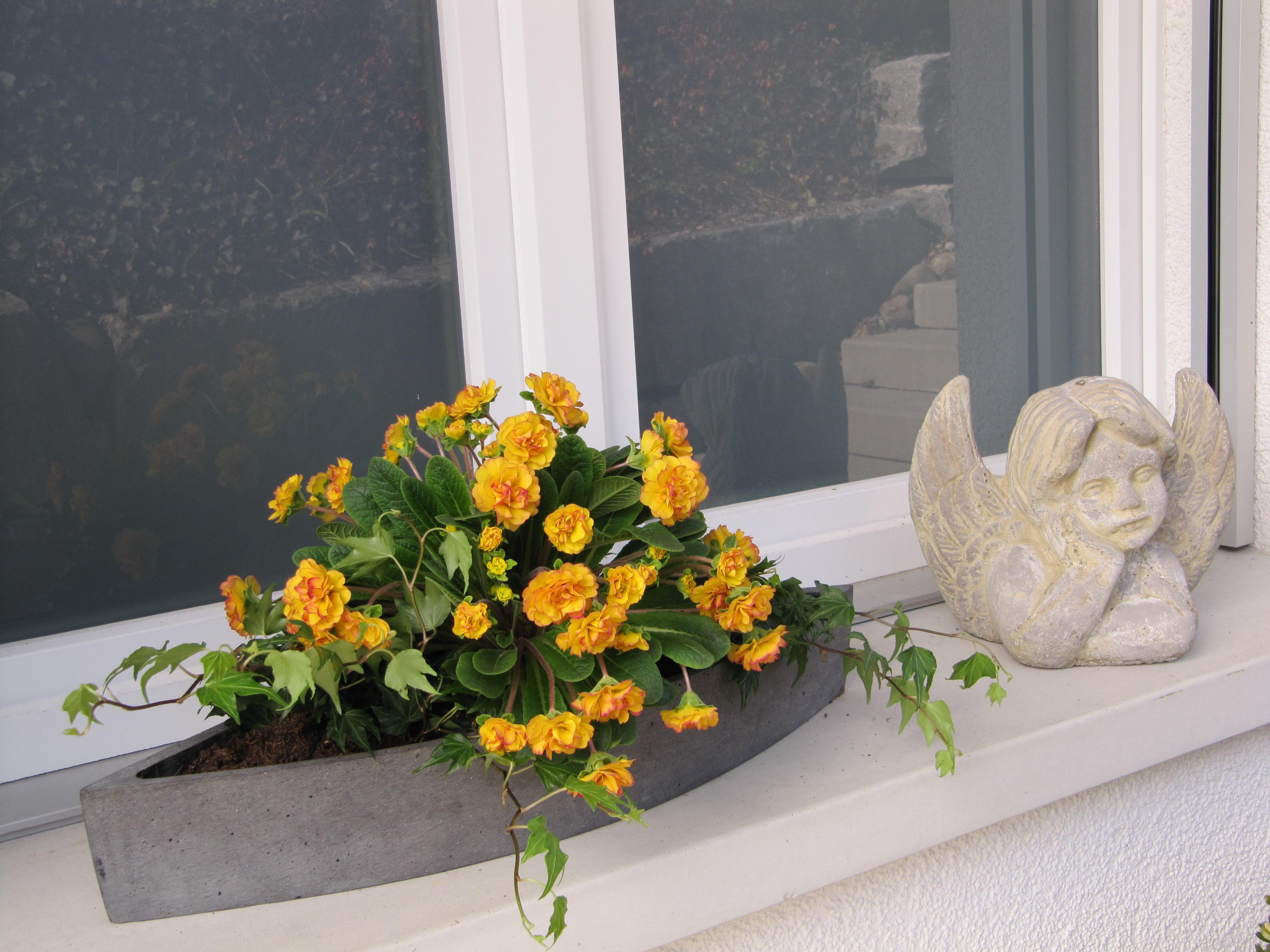 live your balcony hallo fr hling wo bist du. Black Bedroom Furniture Sets. Home Design Ideas